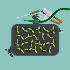 Top View Of Cultivate Tray With Gardening Equipment Vector Illustration.