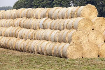 stack of wheat straw