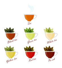Набор изолированных на белом фоне изображений чашек, в которых разного вида заваренный чай и листья чая.