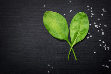 Spinach leafs and sea salt on dark textured background. Free spa