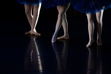 Dancers during ballet performances.Legs only.