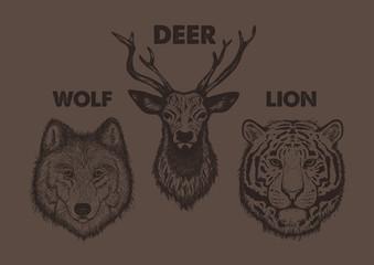 Vintage set animal labels & badges. Retro design graphic element, emblem, logo, insignia, sign, identity, logotype, poster. Wolf, Deer, Tiger, illustration