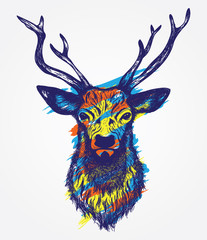 Colorful Hand drawn graphic sketch illustration of a deer head