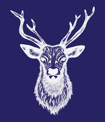 Hand drawn graphic sketch illustration of a deer head