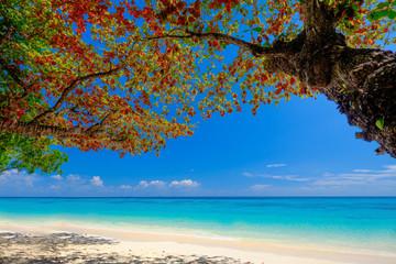 White Beach Blue sky and Blue Ocean at Rok Island Thailand