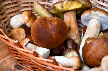 Fresh mushrooms in basket on wooden table