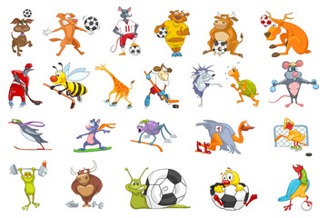 Vector set of animals sport illustrations.