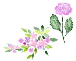 Hand Painted Watercolor Flower. Watercolor Flowers.
