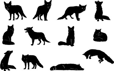 Fox, jumping, vector, silhouette, set, white, illustration, black, symbol, icon, animal