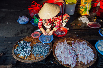 Woman sells fish at the morning market, Vietnam
