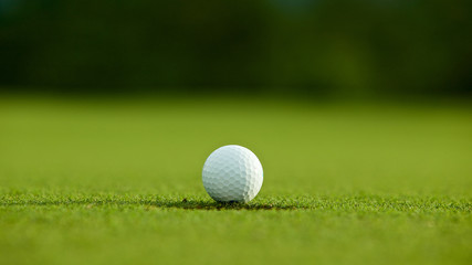 selective focus. white golf ball near hole on green grass good f