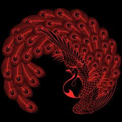 日本画 孔雀