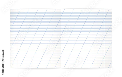 Blank Lined Notebook With Lines, Oblique Diagonal Lines And Red Margin.  Double Exercise Page  Double Lined Paper