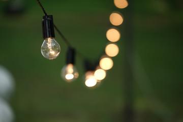 Torse of filament lamp in evening park