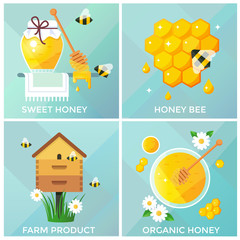 Honey, honeycomb and bees vector illustration, flat design