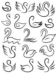 Stylized swan. Vector set of swans.