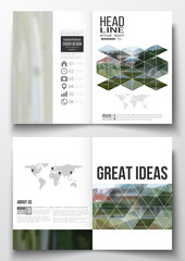 Set of business templates for brochure, magazine, flyer, booklet or annual report. Polygonal background, blurred image, park landscape, modern stylish vector texture