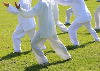 fans of martial arts with white silk dress during the concentrat