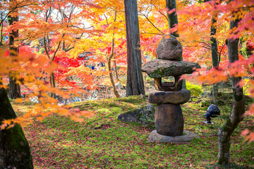 Wall Mural - A Stone Lantern And The Japanese Garden With Maple in autumn sea