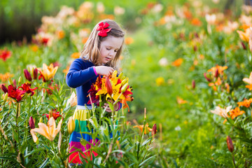 Wall Mural - Little girl picking lilly flowers