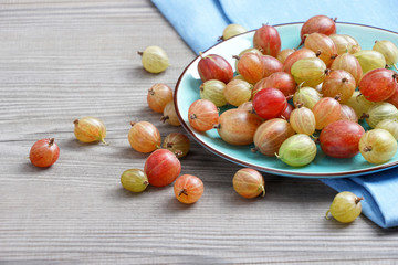 Ceramic plate with gooseberries at old wooden table. Close up, high resolution product. Harvest Concept