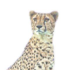 Abstract vector illustration of cheetah head, portrait,