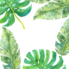 Tropical leaves watercolor frame