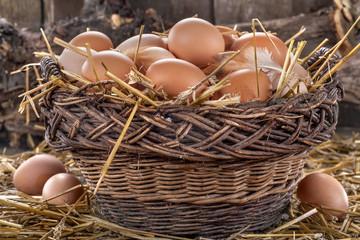 fresh domestic organic eggs in a basket with straw
