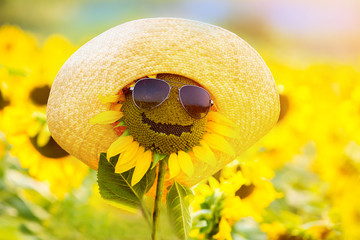 funny sunflower in glasses and a hat, smiling
