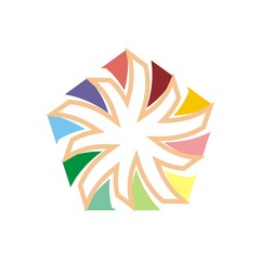 Logo abstract star symbol vector