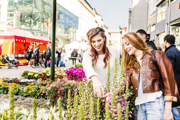 Happy friends looking at flowers in market