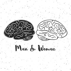 Vector illustration of man and woman brains. These are iconic representations of gender psychology, creativity, ideas.