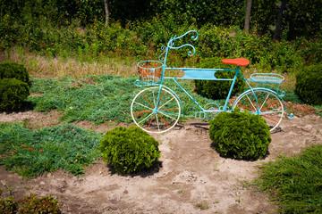 Metal sculpture of bicycle as flowerbed in the garden.
