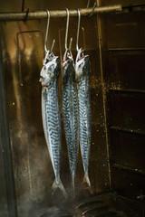 Three mackerel hanging in a fish smoker
