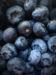 blueberries covering the entire frame
