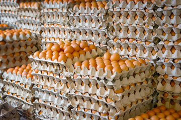 Enormous Stack of Egg Trays at an Asian Public Market