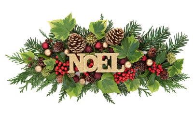 Winter Flora and Noel Decoration