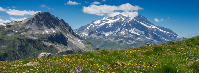 Foto auf AluDibond Gebirge prairie de montagne en été