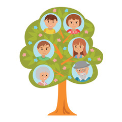 Cartoon generation family tree in flat style grandparents parents and children isolated on white background.