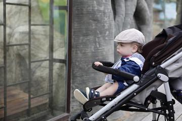 Boy in zoo