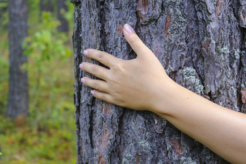 The girl put a hand on the tree trunk. The concept of unity with nature, to draw strength from nature.