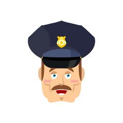 Good friendly cop. happy Policeman. Funny Face Constable. merry