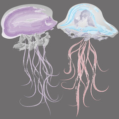 Vector illustration of two watercolor jellyfish