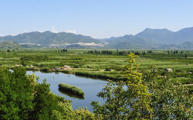 Im Delta des Flusses Neretva in Kroatien