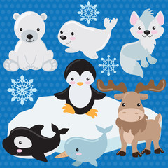Arctic animal vector illustration