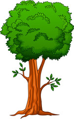 Illustration of a big tree