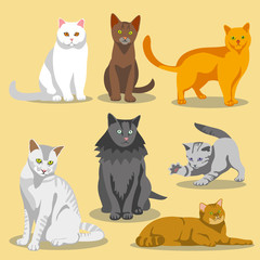 Cute vector cats with different colored fur and markings