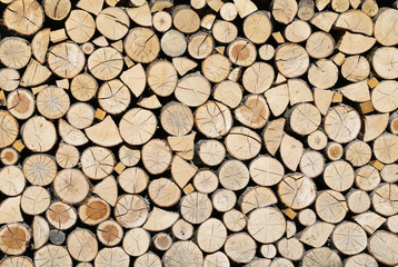 The firewood, which are very necessary in the winter.