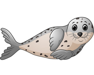 Cute seal cartoon