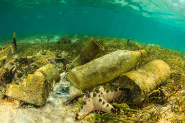 Plastic bottles and bags pollution in ocean